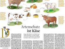 Welt am Sonntag / Käse